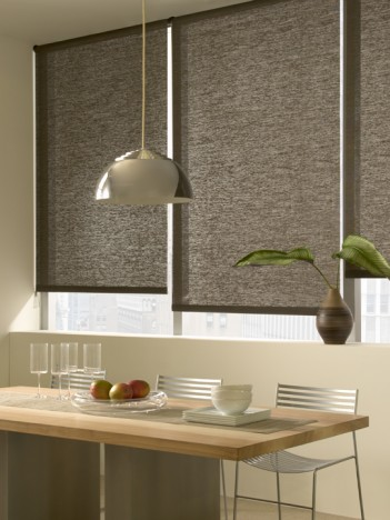Roller Shades from The Shade Store