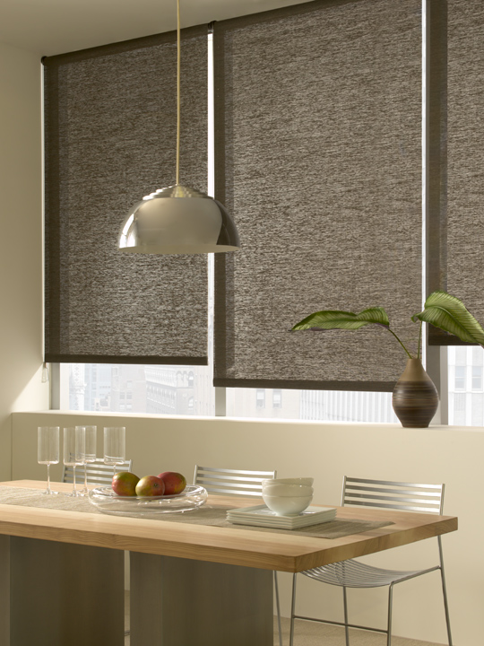 Roller Shades from The Shade Store, Eclectic Style