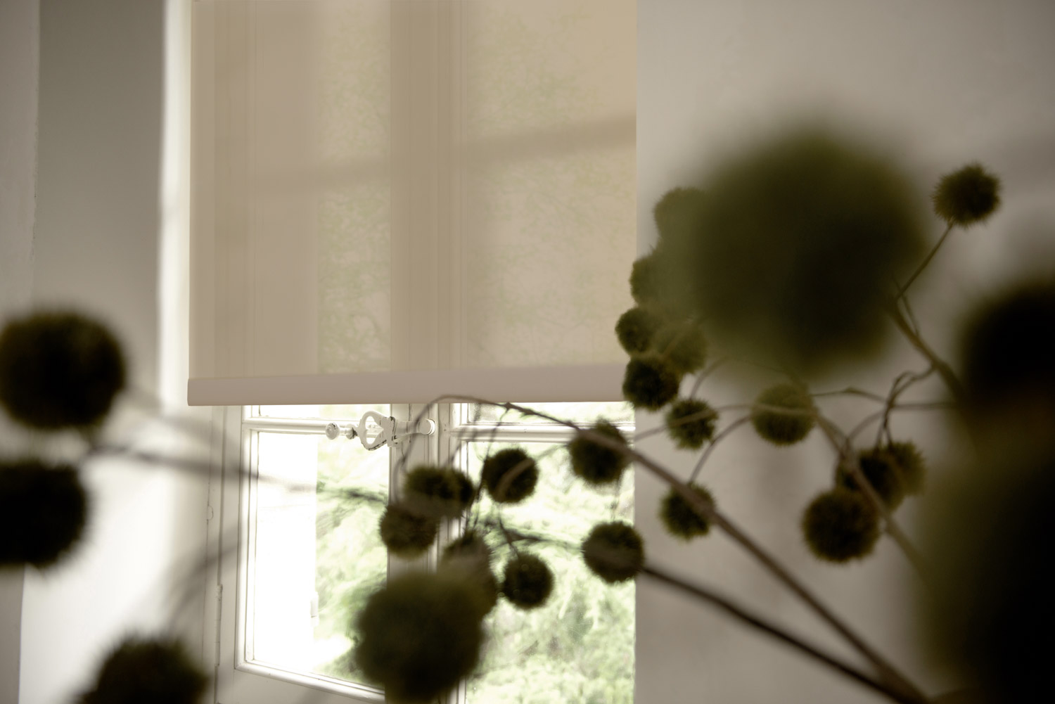 Solar shades in 3% material block harmful UV rays, but still help your indoor plants grow.