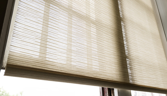 Natural Roller Shade by The Shade Store