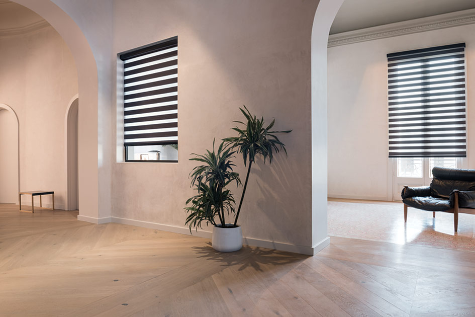 Double Roller Shades for Privacy