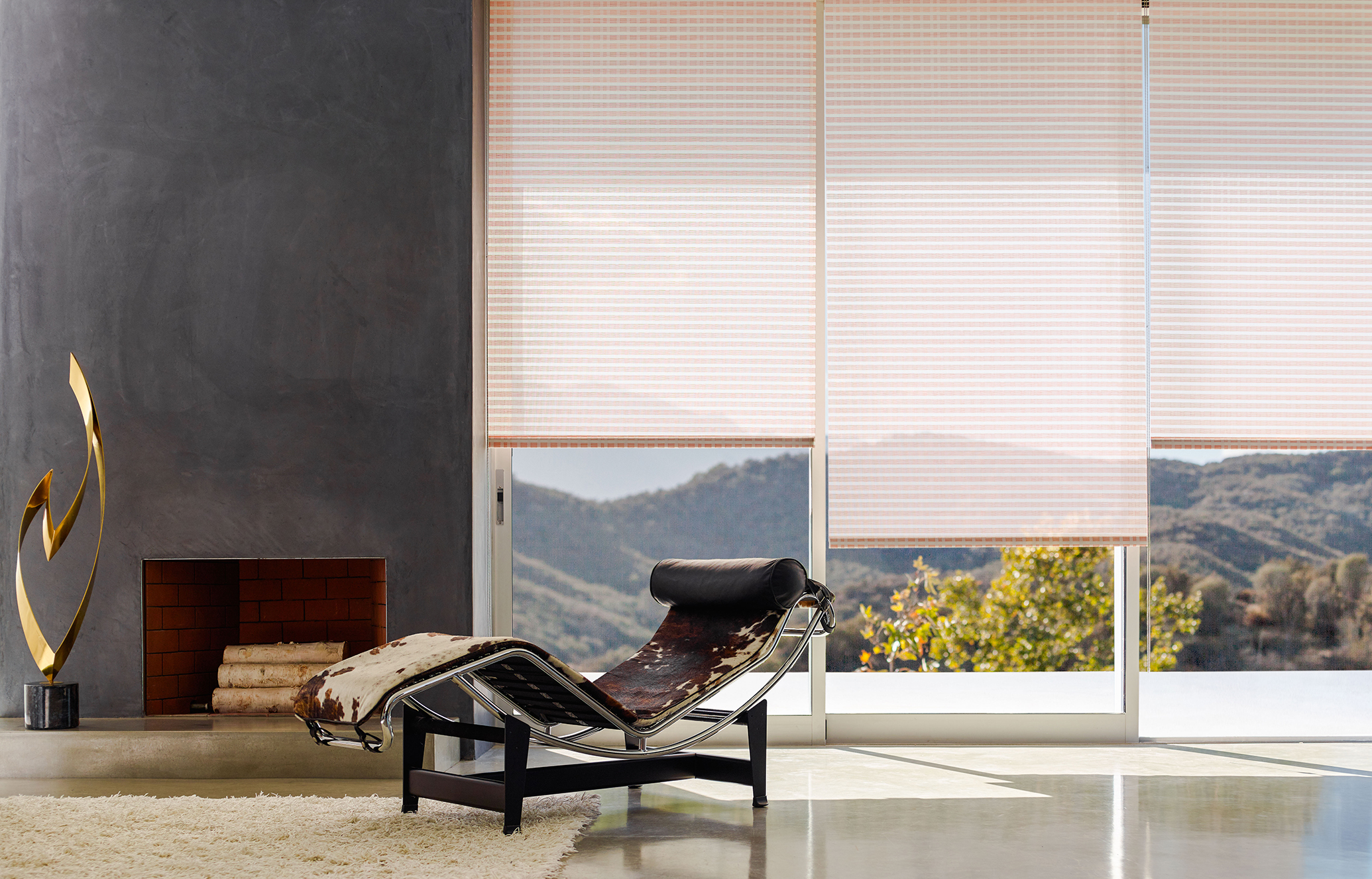 Controlled Blinds With Motorized Window Shades Remote Control