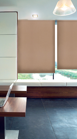 Window Roller Shades